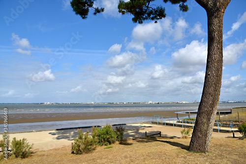 Wallpaper Mural Beach at low tide of Saint Brevin les Pins in Pays de la Loire region in western