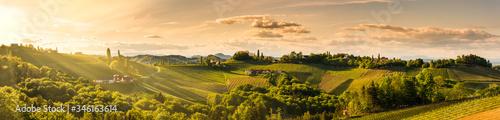 Fotografia Panorama of vineyards hills in south Styria, Austria