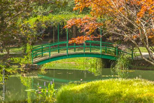 Fotografiet Green Footbridge Over Canal Against Trees In Park