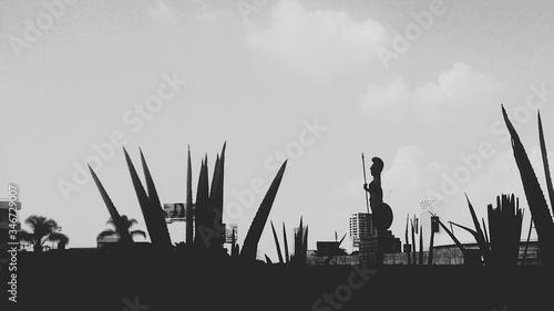 Fotografie, Obraz Silhouette Minerva Statue Against Sky
