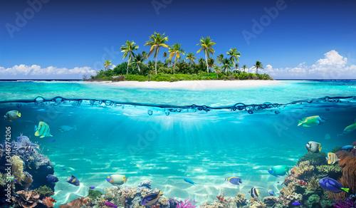 Fotografia, Obraz Tropical Island And Coral Reef - Split View With Waterline