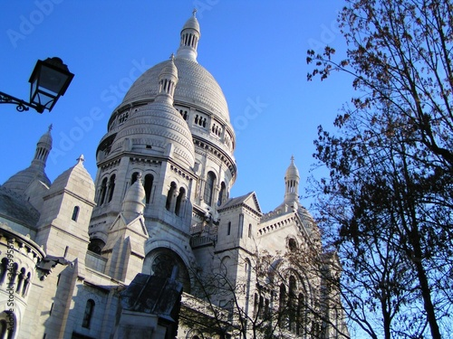 Photo Low Angle View Of Basilique Du Sacre Coeur And Trees Against Clear Sky