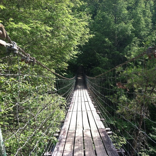 Tablou Canvas Wooden Footbridge With Netting And Forest