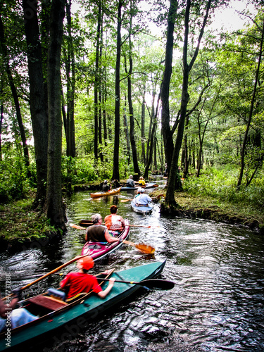 Murais de parede People Canoeing In Stream Amidst Forest