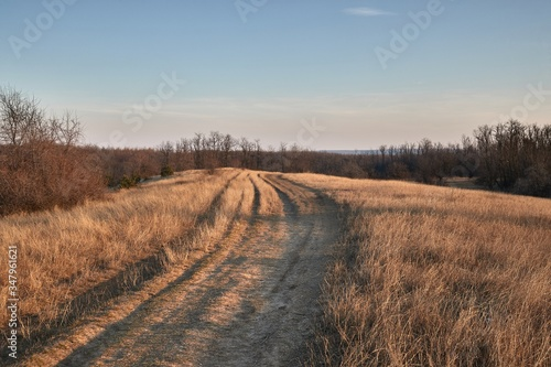 Murais de parede Dirt road in a countryside field in dry late autumn
