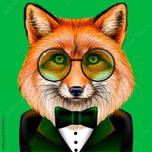 Fox Tapéta, Fotótapéta