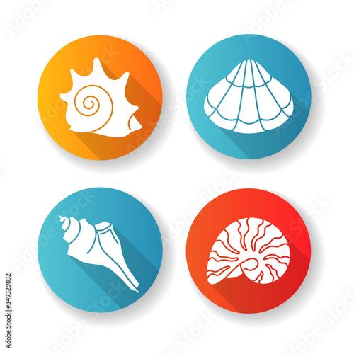 Various seashells flat design long shadow glyph icons set Fototapeta