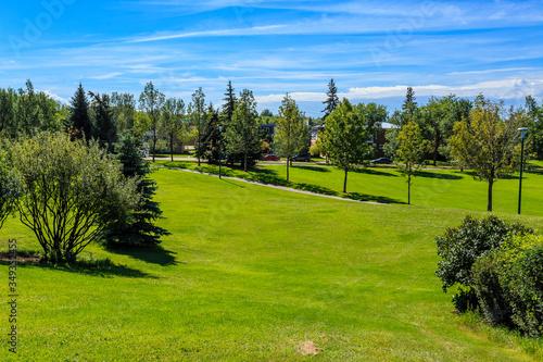 Fototapeta Grosvenor Park