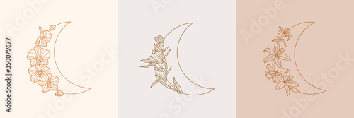 Vászonkép Set of Crescent moon of orchid and Lily flowers in trendy linear minimal style