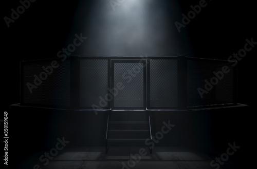 Fotografija MMA Cage Door Spotlight