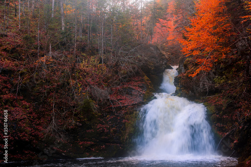 Canvas Print Gushing water fall in an autumn forest landscape with dense trees, Cape Breton