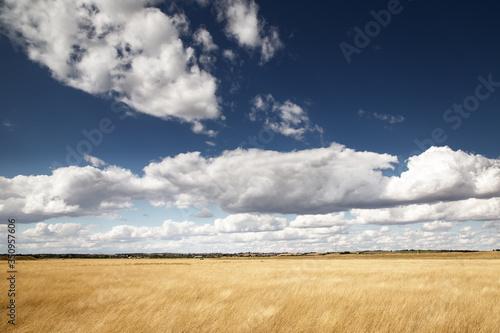 beautiful farmland in essex england фототапет