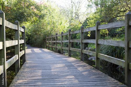 Canvastavla Wooden Footbridge Along Trees In Garden