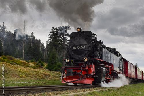 antiguo tren de vapor en un bosque de Alemania Fototapeta