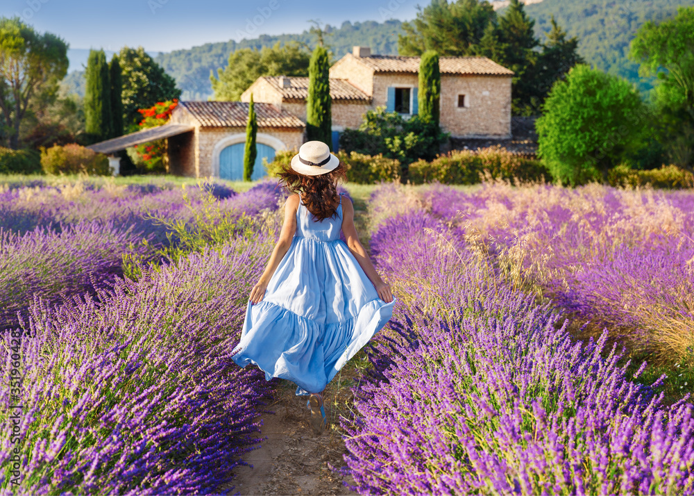 Provence, France. Beautiful view on booming Lavender fields in Provence, France. National park Luberon. Lovely young Caucasian woman enjoying the lavender meadow walking to traditional French house. - obrazy, fototapety, plakaty