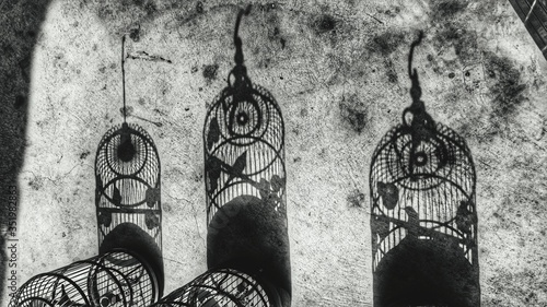 Fotografie, Tablou Shadows Of Birdcage On Footpath