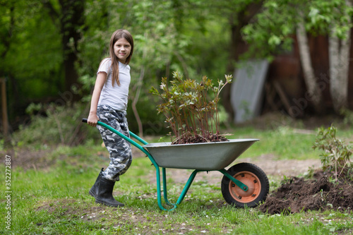 Photographie Caucasian girl child works in the garden, kid with a wheelbarrow transports peon