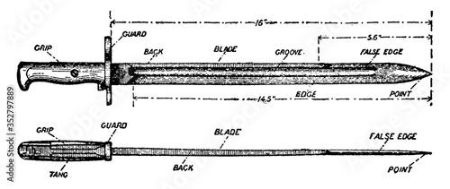 Foto Bayonet, vintage illustration