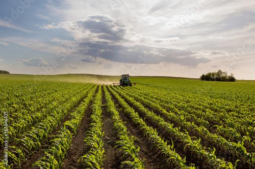Fotografie, Obraz Tractor harrowing corn field