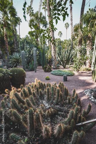 Leinwand Poster Panorama of The Majorelle Garden is a botanical garden and artist's landscape garden in Marrakech, Morocco