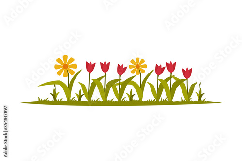 Photo Garden Flowers Growing in the Flowerbed Flat Style Vector Illustration on White