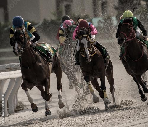 Fotografiet competitive horse racing in heavy sandstorm.