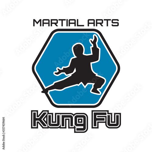 Photo kung fu martial art isolated on white background