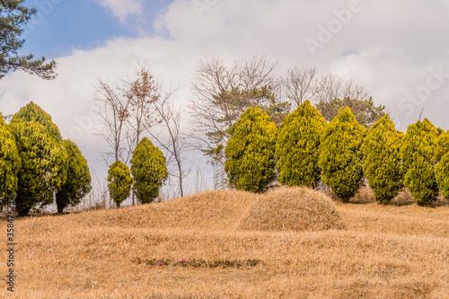 Wallpaper Mural Unmarked burial mound on hillside