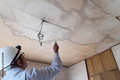 Canvas Print 雨漏りした天井を調査するビジネスマン 住宅 リフォーム 解体前