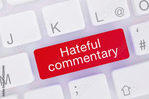 Obraz na plátně Hateful commentary