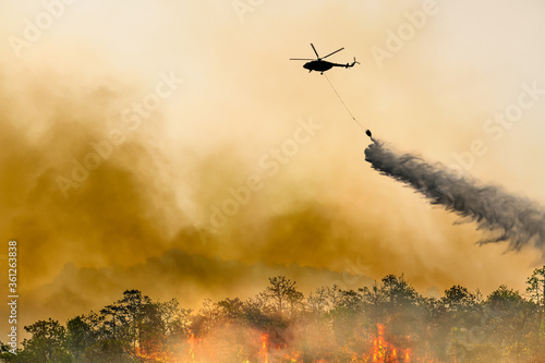 Silhouette firefithing helicopter dumps water on forest fire Fototapeta
