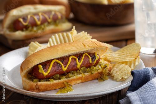 Obraz na plátně Grilled Hot Dog on a Bun