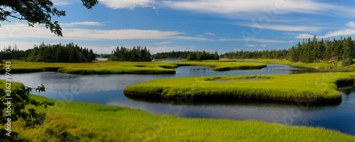 Photo Panorama of tide pool water with salt marsh cordgrass on Cape Sable Island Nova