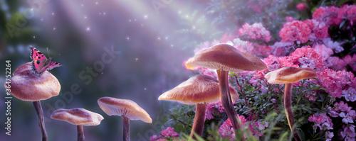 Fototapeta premium Magiczne grzyby fantasy w zaczarowanym bajkowym marzycielskim lesie elfów z bajecznie kwitnącym kwiatem różowej róży i motylem na tajemniczym tle, błyszczącymi świecącymi gwiazdami i promieniami księżyca w nocy