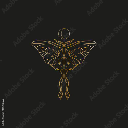 Fototapeta Sacred line geometric symbol with butterfly and moon phase, gold figure on black background