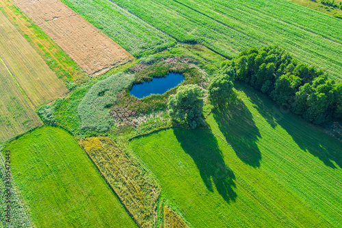Stampa su Tela Aerial view of natural pond surrounded by pine trees. Europe