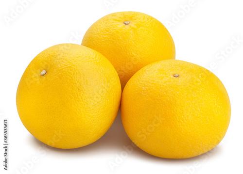 Fotografie, Tablou white grapefruit