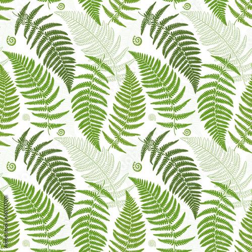 Fotografie, Obraz Seamless pattern with fern leaves. Exotic green plants