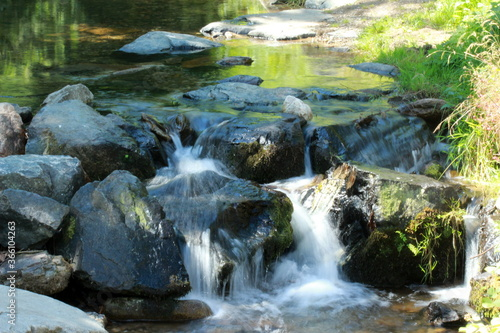 Wallpaper Mural Petite cascade de ruisseau