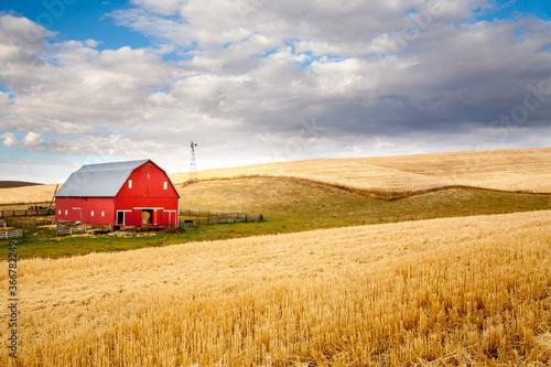 Fototapeta A red barn in the fall season in the palouse wheat country in southeastern Washington