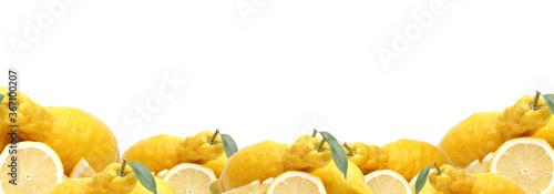 Fotografiet Lemon fruit on white background