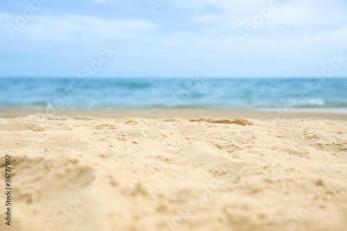 Fototapeta Beautiful sandy beach and sea on sunny day, closeup