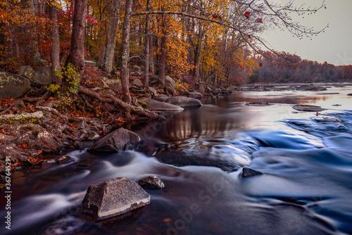 Obraz na płótnie River in autumn forest. Fall foliage in pony pasture, Richmond VA