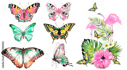 beautiful watercolor butterflies, isolated on a white