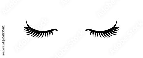 Canvastavla Black false eyelashes icon. Beauty product for eyelash extension