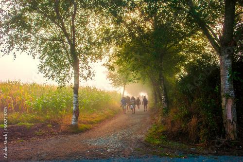 Peregrinos haciendo el Camino de Santiago por un camino de tierra en Galicia Fototapet