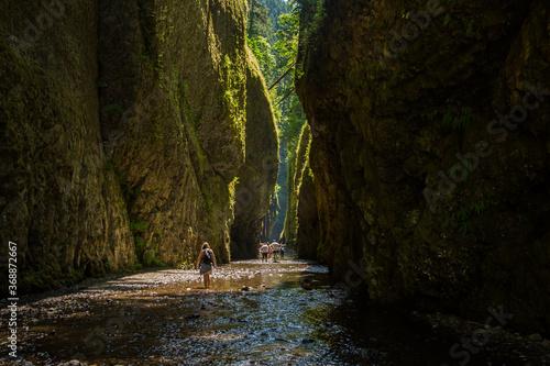 Fotografija Day hikers in Oneonta Gorge, Columbia River Gorge National Scenic Area, Oregon