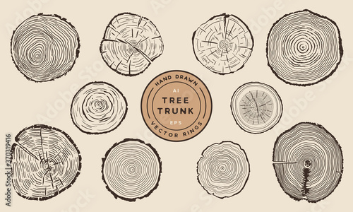Canvas Print Wood Tree Trunk Rings - Hand Drawn Vector Set