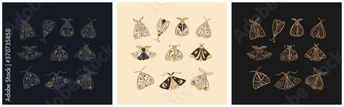 Fotografia Hand drawn set of mystic moths or Butterfly