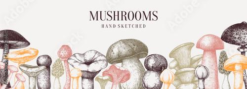 Fotografia Vintage mushrooms banner